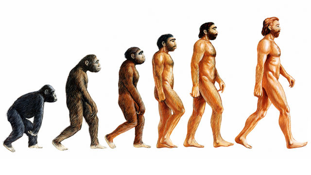 teoria evolutiei