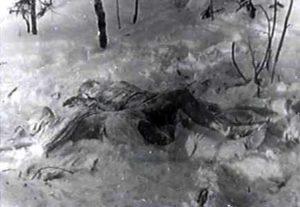 Cele doua cadavre de langa pin